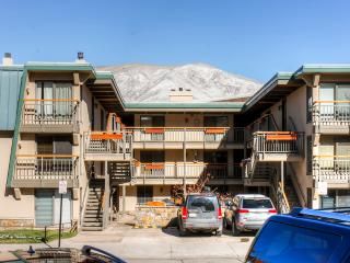 New Listing! Beautiful 2BR Aspen Condo w/Wifi & Modern Kitchen - Less Than 2 Blocks to the Gondola! Walking Distance From Everything Aspen Has to Offer - Aspen vacation rentals