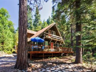 'The Cottage in the Woods' Lovely 4BR Nevada City Cabin on 1.5 Wooded Acres w/Large Private Deck - Near Scotts Flat Lake, Historical Sites, Bike Trails & More! - Nevada City vacation rentals