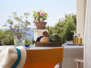 Ploes Villas-Sky Villa- Ionian beach, Anc. Olympia - Skafidia vacation rentals