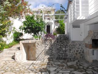 The Olive Tree, Bigova, Montenegro - Bigovo vacation rentals