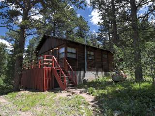 Secluded & Rustic 2BR Allenspark Cabin w/Charcoal Grill, Large Deck & Amazing Mountain Views - Easy Access to Estes Park, Rocky Mountain National Park & More! - Allenspark vacation rentals