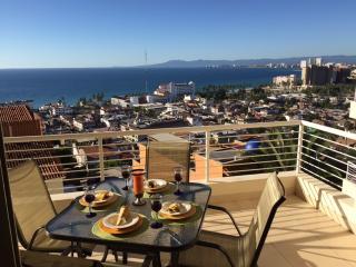 Nice Condo with Internet Access and A/C - Puerto Vallarta vacation rentals
