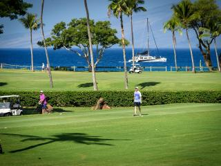 Ocean & Golf Course View Studio - Ka'anapali vacation rentals