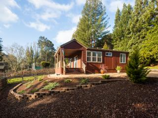 Santa Cruz Vineyard Retreat - Santa Cruz vacation rentals