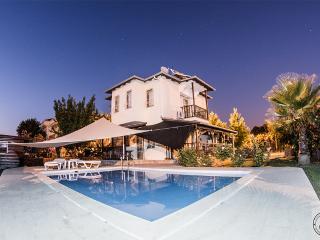 Nice Villa with Internet Access and Dishwasher - Dalyan vacation rentals