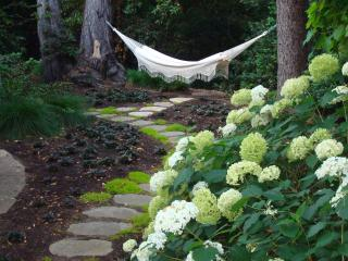 A quiet retreat in an amazing setting - Oakland vacation rentals