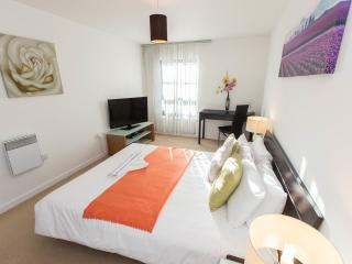 Limehouse Marina Views: 3 bedroom apartment- - London vacation rentals