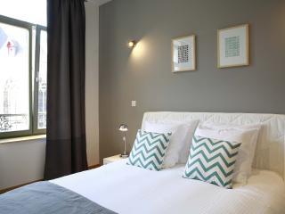 FLANDRES APPART HOTEL - Le Vendôme  T2 - Lille vacation rentals