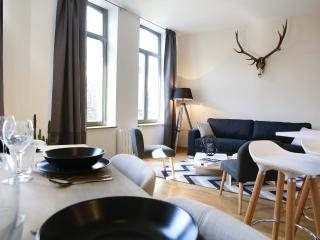FLANDRES APPART HOTEL - Le Bristol T2 - Lille vacation rentals