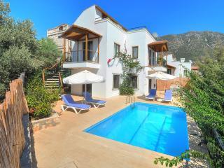 Villa Olive 6 - Kalkan vacation rentals