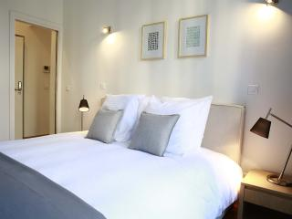FLANDRES APPART HOTEL - Le Clarence  T3 - Lille vacation rentals