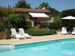 Chestnuts set in the beautiful valley of Dordogne. - Saint-Andre-d'Allas vacation rentals