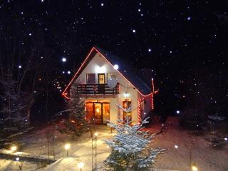 charming retreat in small paradise - Sinaia vacation rentals