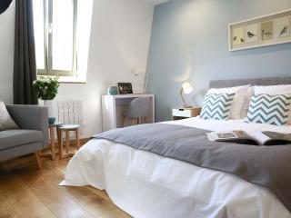 FLANDRES APPART HOTEL - Le Claridge Studio - Lille vacation rentals