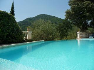 Bastidon des Oliviers villa - Claviers vacation rentals