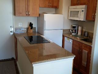 Newly Renovated 1 Bedroom in the Heart of Waikiki - Honolulu vacation rentals