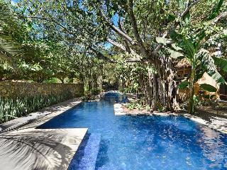 Luxury Beach Villa in Langosta Beach, Tamarindo. Steps to the Ocean! - Tamarindo vacation rentals