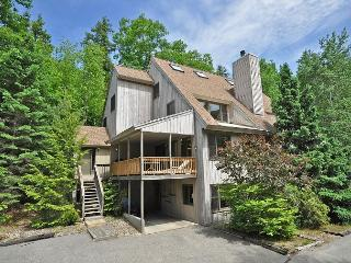 4BR in Cranmore Birches-10 Min to Storyland w/ Cable,WiFi,Wii & Air Hockey! - North Conway vacation rentals
