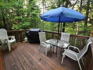 3BR Jackson House Near hiking, Sight Seeing, Shopping & Restaurants! - Jackson vacation rentals