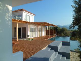 ***STUNNING villa, private grounds, pool with the sea below.  PERFECT*** - Amfilochia vacation rentals