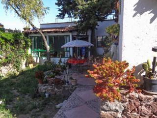 1 bedroom House with Internet Access in Dolores Hidalgo - Dolores Hidalgo vacation rentals