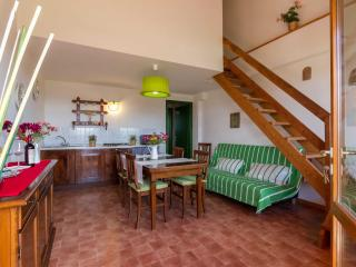 Geranio 2 Bedroom with Terrace and View - Florence vacation rentals