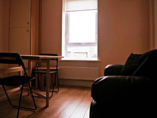 Modern One Bedroom Apartment - Dublin vacation rentals