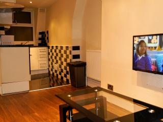 1 BR Top - Archway / Holloway Road - London vacation rentals