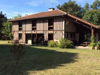 Grande maison landaise restaurée - Vielle-Saint-Girons vacation rentals