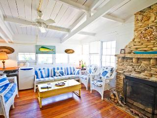The Historic Hut, 3 Bedrooms, Ocean Front, Pet Friendly, WiFi, Sleeps 6 - Saint Augustine vacation rentals