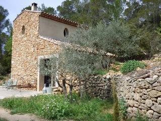 Beau cabanon au milieu des oliviers - Barjols vacation rentals