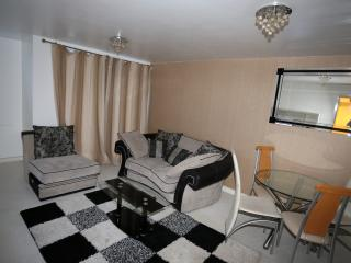 Exclusive 2 Bed 2 Bath Apartment in West Thamesmea - London vacation rentals