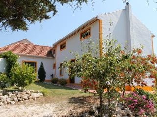 Quinta Japonesa - Casa Tavares, Holiday Home 2-8p - Salir de Matos vacation rentals