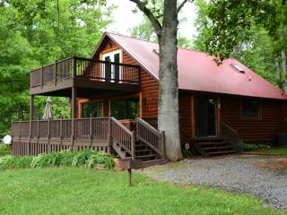 Waters Edge Cabin on Lake Nantahala - Topton vacation rentals
