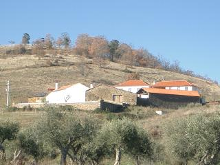 Beautiful 11 bedroom Farmhouse Barn in Vila Real with Television - Vila Real vacation rentals
