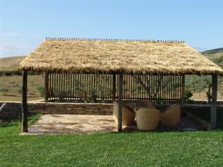 11 bedroom Farmhouse Barn with Grill in Vila Real - Vila Real vacation rentals