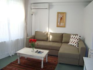 Deluxe Suite Apartment 1 - Istanbul vacation rentals