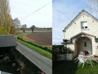 Holiday gite in Varennes Sur Loire - Varennes sur Loire vacation rentals