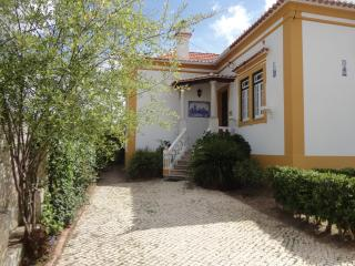 Villa for 10 people near beach - Torres Vedras vacation rentals