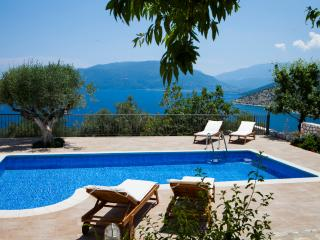 Villa Thalassini_ idylic location_Best sea view - Agia Efimia vacation rentals