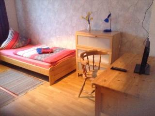1 bedroom Apartment with Internet Access in Duisburg - Duisburg vacation rentals
