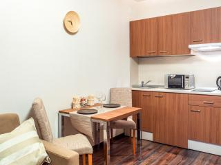 Studio #62 - Saint Petersburg vacation rentals