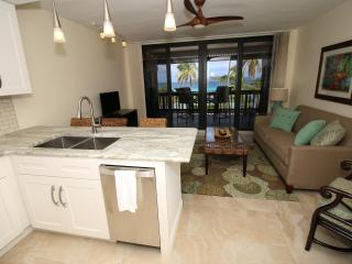Sea Coral at Sapphire Beach 2BR - Saint Thomas vacation rentals