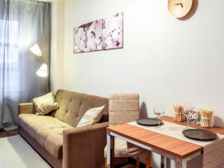 Studio #43 - Saint Petersburg vacation rentals