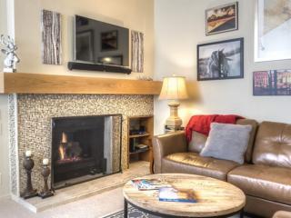 Cozy 3 bedroom Condo in Sun Valley - Sun Valley vacation rentals