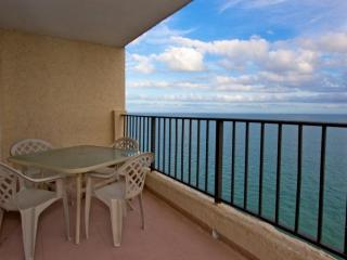 Perfect Apartment with Internet Access and Dishwasher - Garden City vacation rentals