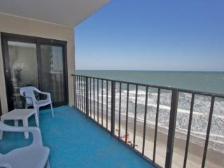 2 bedroom Apartment with Internet Access in Garden City - Garden City vacation rentals