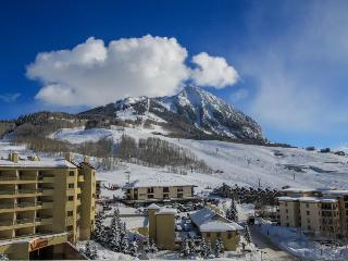Cozy home w/amazing views, shared hot tub! Walk to slopes & enjoy free shuttle! - Crested Butte vacation rentals