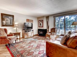 Fantastic Ski-In/Ski-Out Luxury Remodeled Condo in Breckenridge - Walking Distance to Town & Trails End on Peak 9! Perfect Location For All Your Adventures! - Breckenridge vacation rentals
