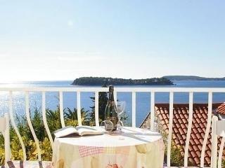 Dubrovnik/Lozica - Lozica vacation rentals